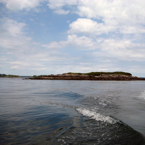 College Island